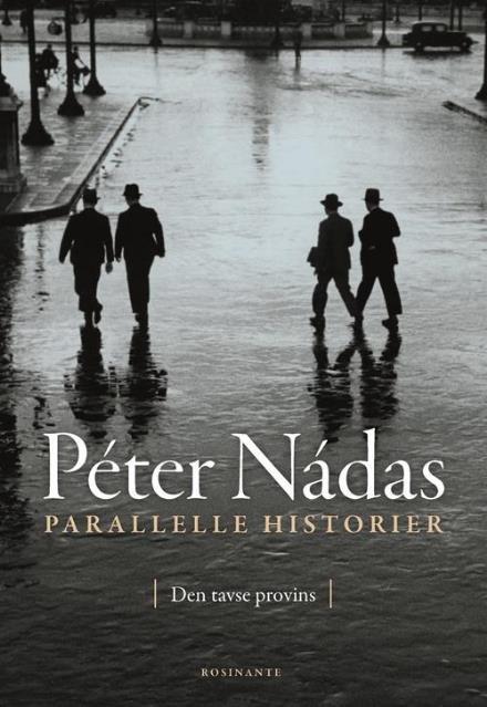 Peter Nadas, Parallelle historier bind 1. Den tavse provins