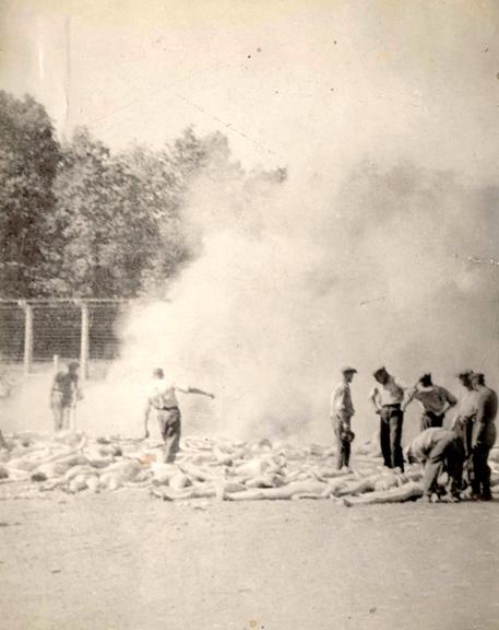 En sonderkommando på arbejde i Auschwitz II-Birkenau. Her er billedet beskåret.